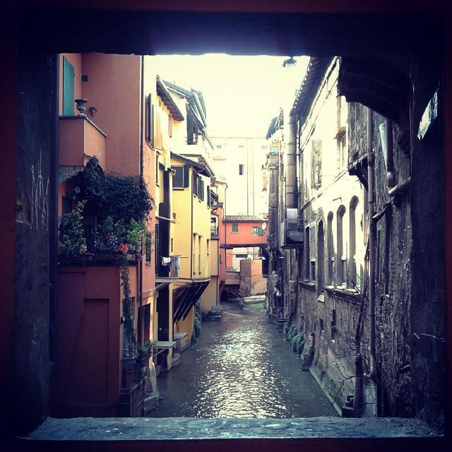 una foto scattata poco più di un anno fa a Bologna